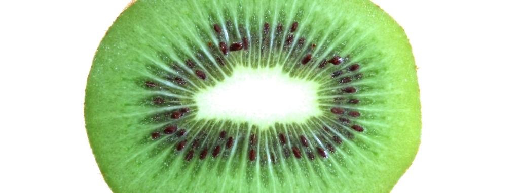 kiwi 12