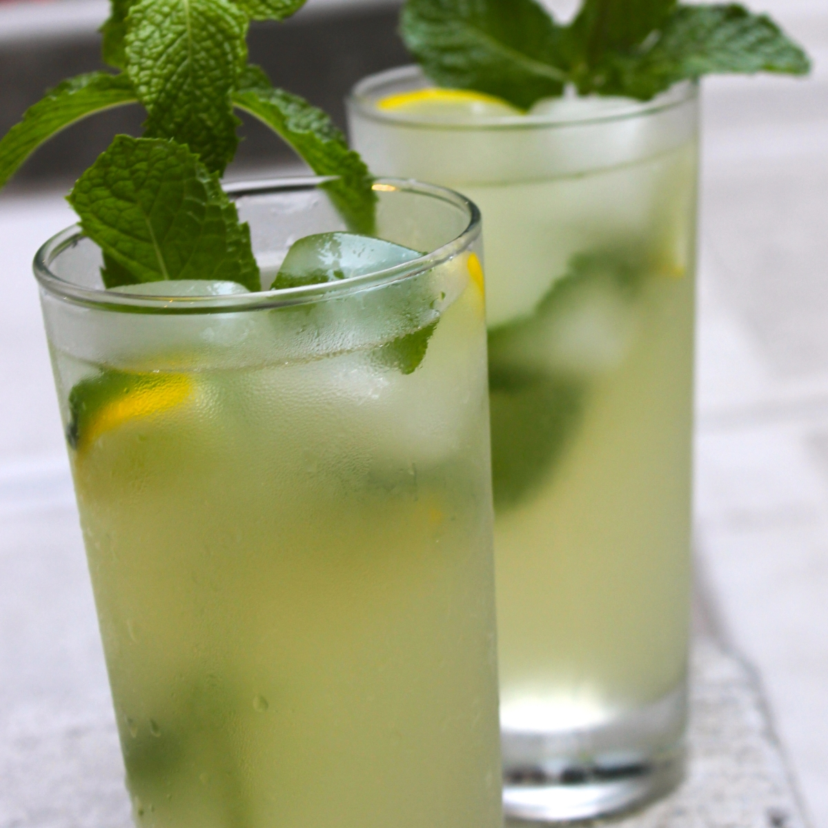 In Search Of The Abu Dhabi Lemon Mint